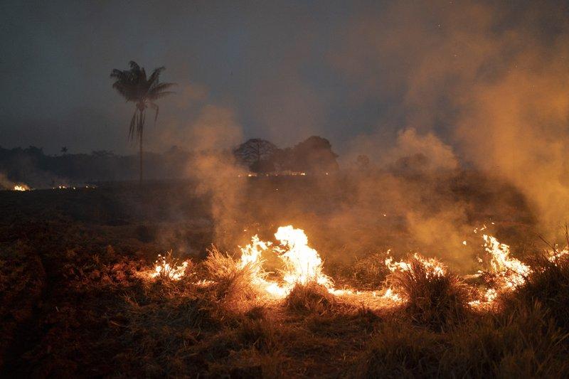 Brezilya'daki yangınlarda 1,5 milyon hektar alan yandı