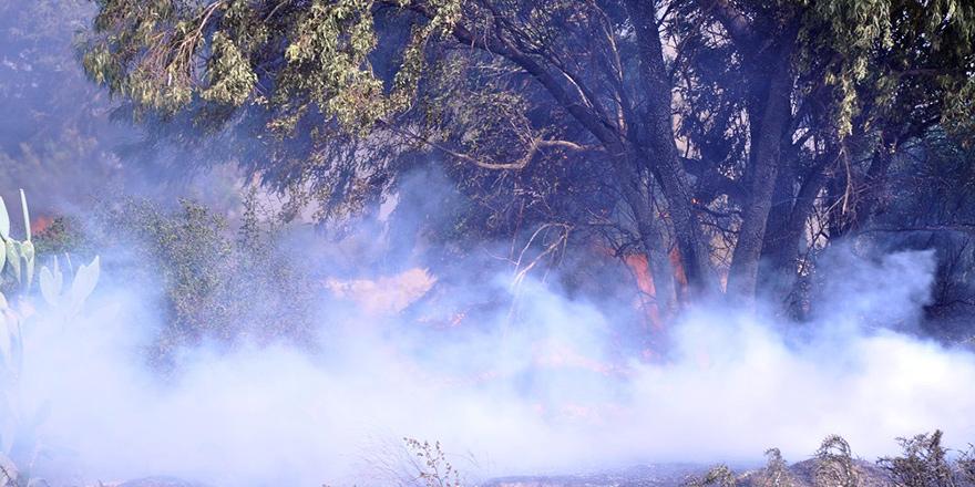 Gazimağusa'da yangın çıktı!