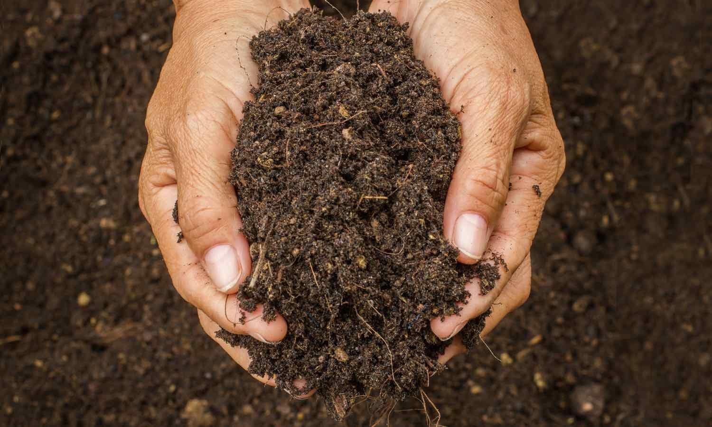 Şifa için toprak yiyorlar…