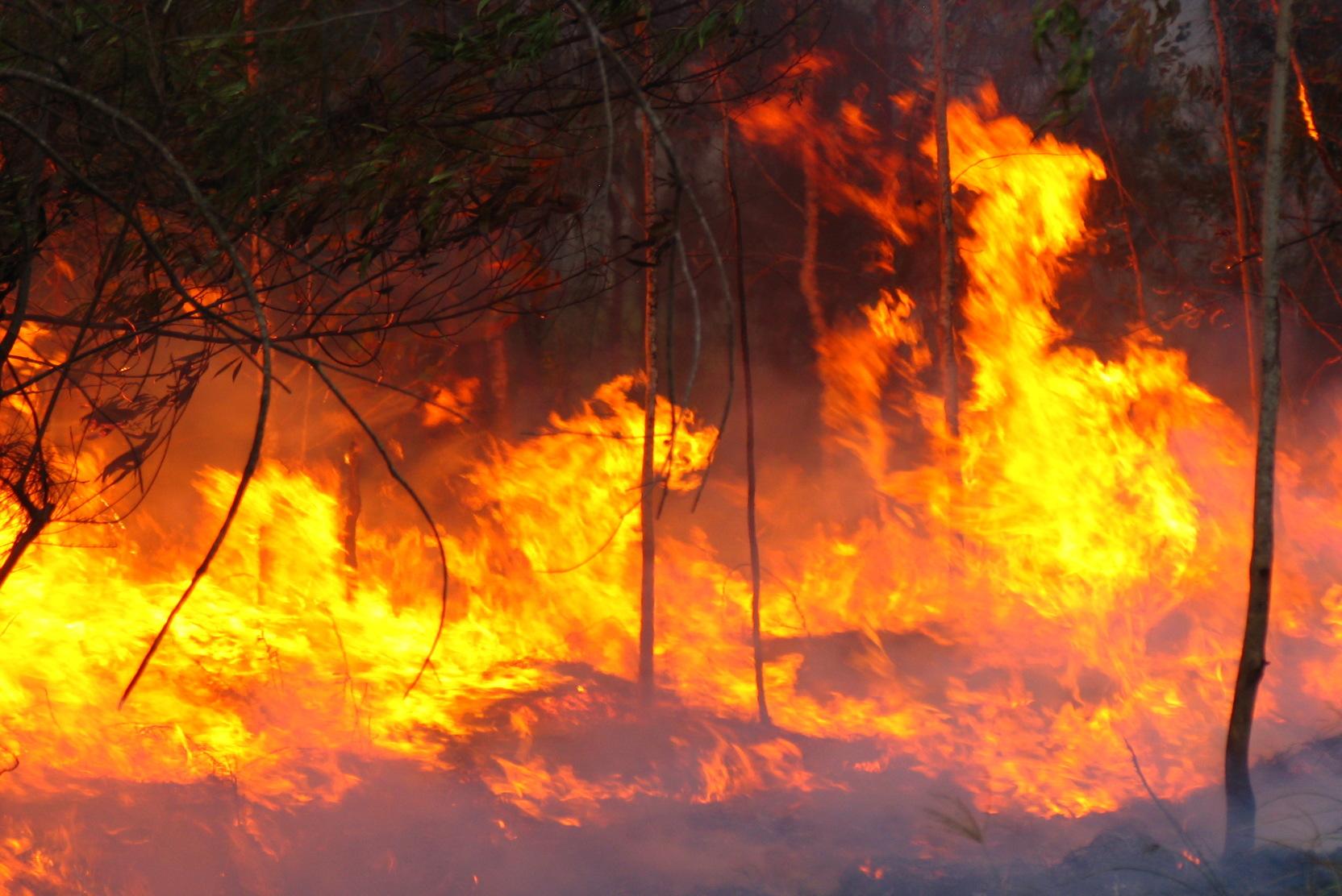 Beyköy'de yangın!