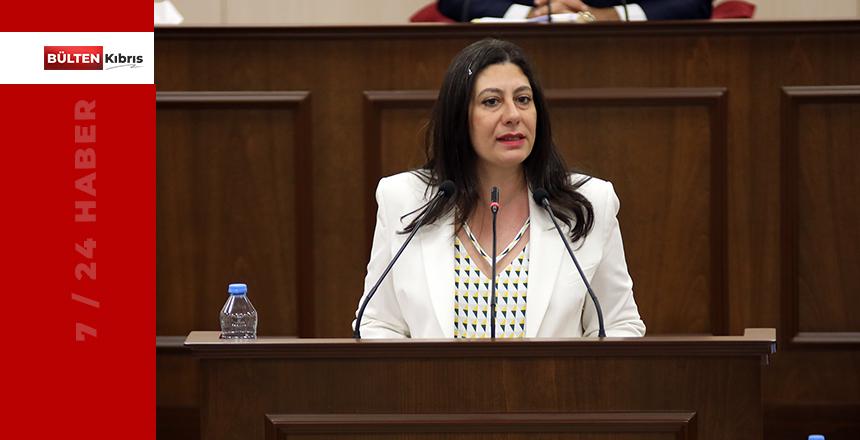 """İNCİRLİ: """"BİZ ERDOĞAN'IN GELMESİNE İTİRAZ ETMEDİK!"""""""