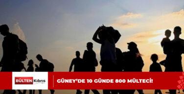 GÜNEY'DE 800 MÜLTECİ!
